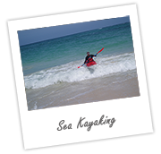 sea-kayak-link